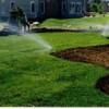Green Lawns Start Now
