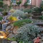 Water Gardens (10)