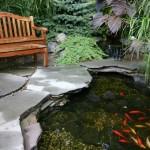 Water Gardens (2)