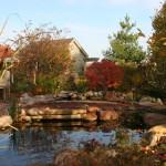 Water Gardens (5)