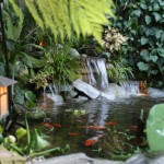 Water Gardens (9)