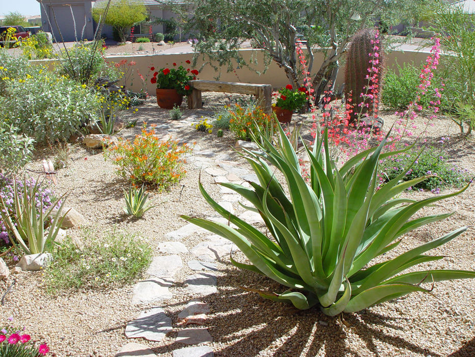 what is xeriscaping buck 39 s landscape material
